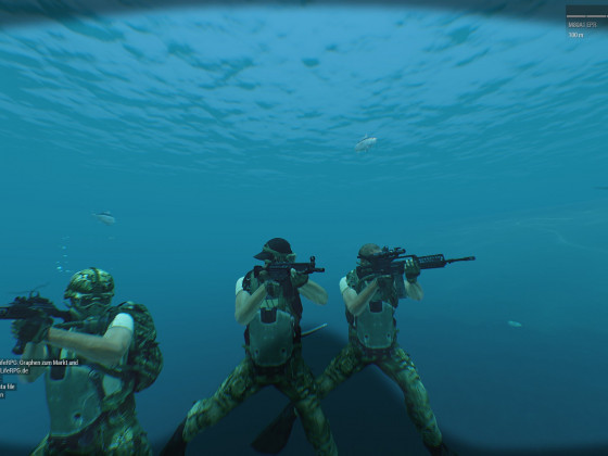 Navy Seals Aktion