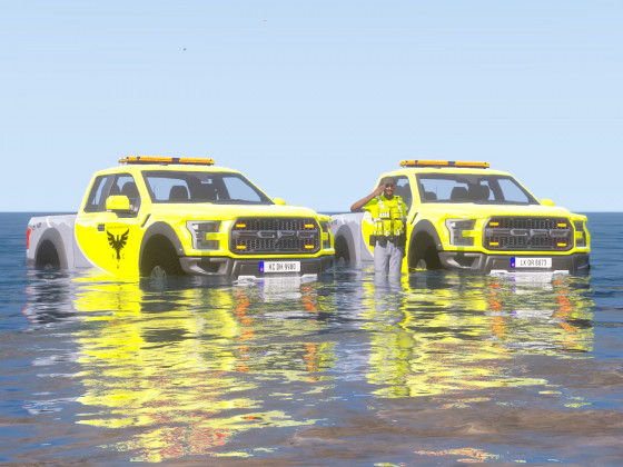 Raptor in the water